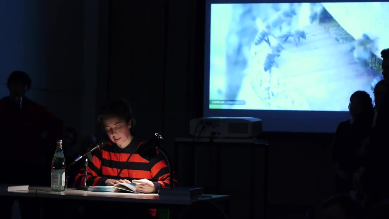 A person reads from a book illuminated by a lamp on a table in a dark room, with a video projection of bees in the background.