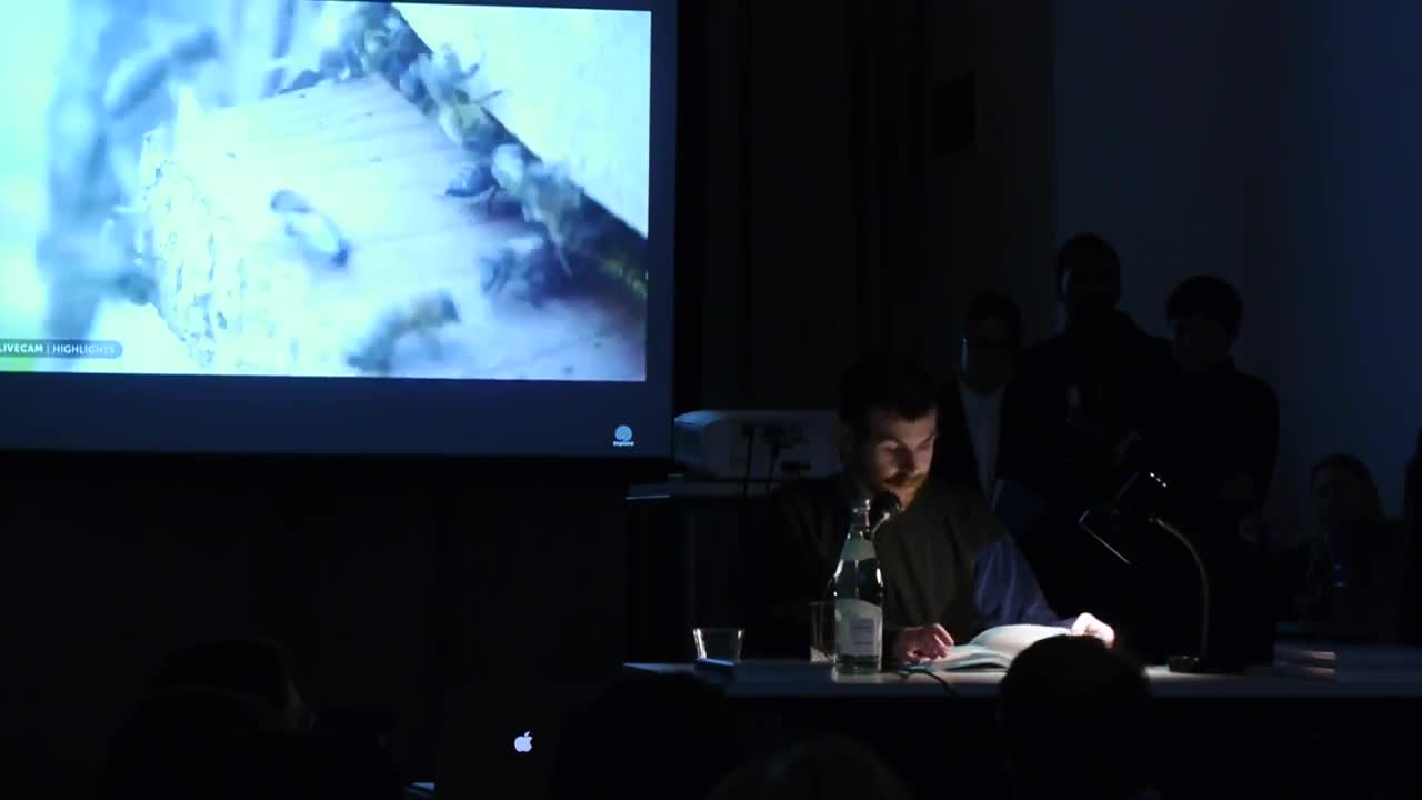 A person reads from a book illuminated by a lamp on a table in a dark room, with a video of bees projected in the background.